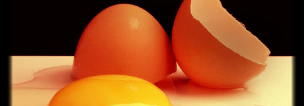 6 Reasons to Love Eggs
